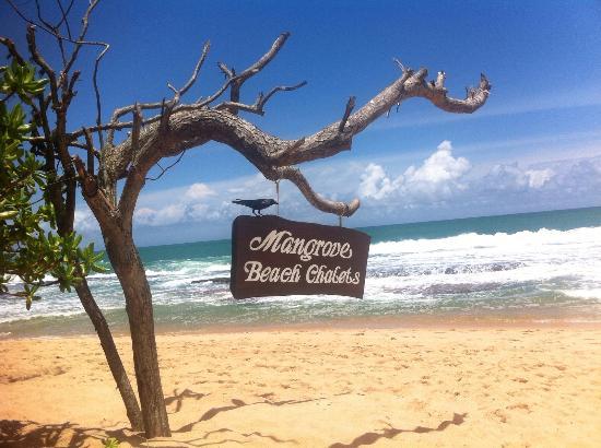 Mangrove Beach Cabanas & Chalets
