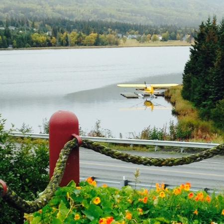 Beluga Lake Lodge: Nice View of Lake Beluga and FloatPlane