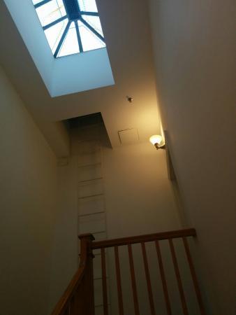 710 Guest Suites: Puit de lumière!