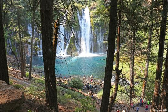 McArthur-Burney Falls Memorial State Park: halfway through the hike you'll be welcomed by this view already