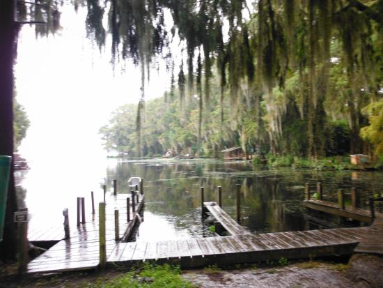 Neighbor picture of lake rousseau rv fishing resort for Florida fishing lodges