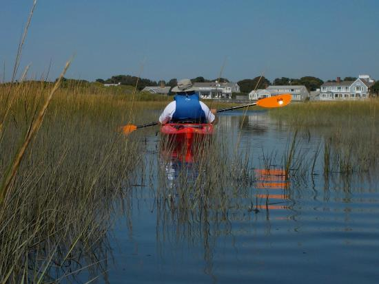 West Dennis, MA : Bass River Kayaks - Great Day