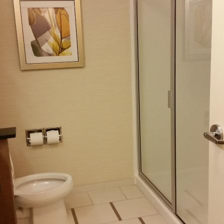 Fairfield Inn & Suites Montgomery Airport South: bathroom