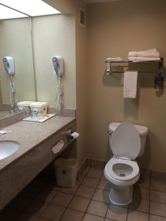 Comfort Inn & Suites Sacramento University Area : photo3.jpg
