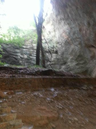 part of the cave - Picture of Aggitis Cave, Aggitis ...