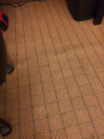 Holiday Inn Truro: Carpet Needs Stretched