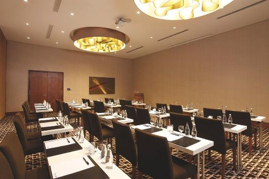 Radisson Blu Gautrain Hotel: Meeting Room