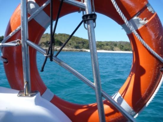Sail Capricornia: Sneak peak