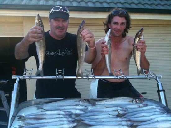 Bagout Tuna Fishing Charters: Good haul of whiting