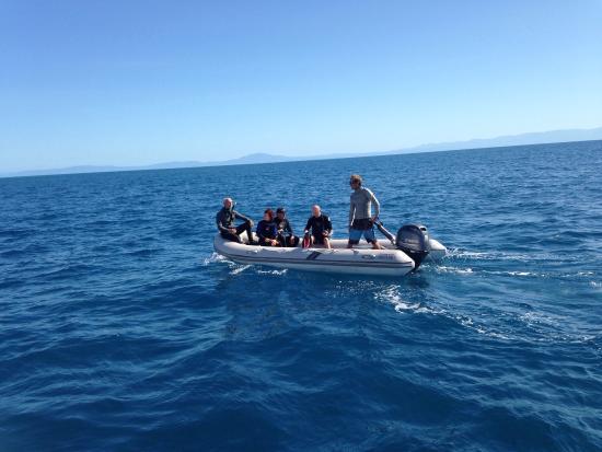 Aroona Luxury Boat Charters - Day Cruise: photo0.jpg