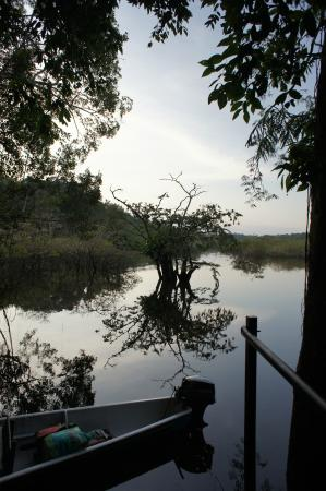 Cuyabeno Lodge: Steg