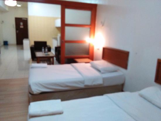 V Garden Hotel : Private Apartment