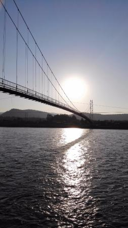 Cable Bridge Across River Irkut