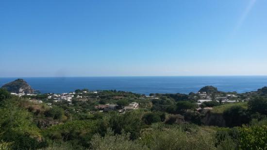 Panza, Italia: Panorama della camera
