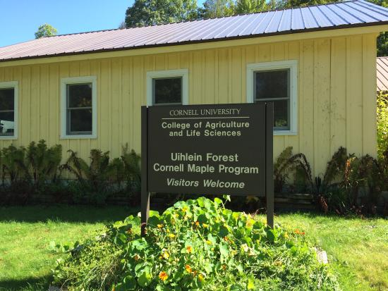 Uihlein Sugar Maple Research  & Extension Field Station