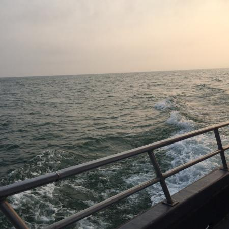 Tiny Tim 39 S Fishing Charters Erie Aktuelle 2018 Lohnt