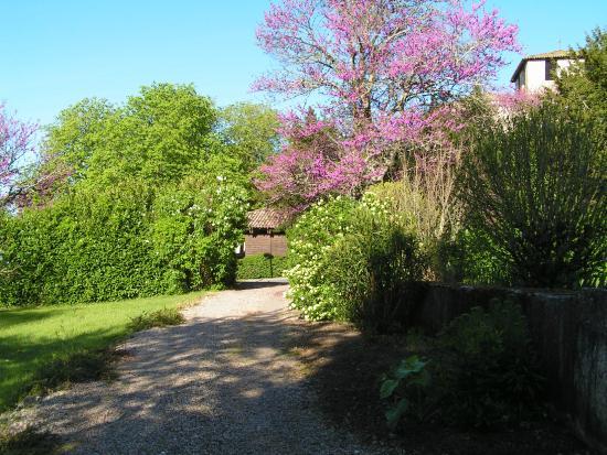 Montcaret, Frankrike: le jardin
