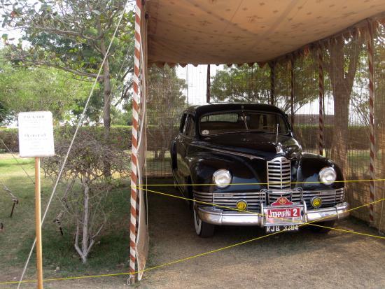 photo antic cars