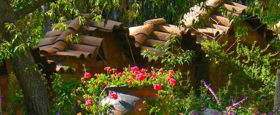 Eco Andina Hotel: Fachada