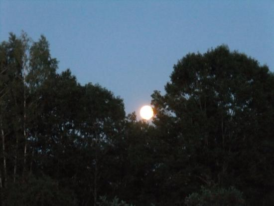 "Jefferson, ME: Full (""blue"") moon rising as we walked back from the lake"