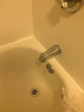 SpringHill Suites Chicago Naperville/Warrenville: Leaky Faucet