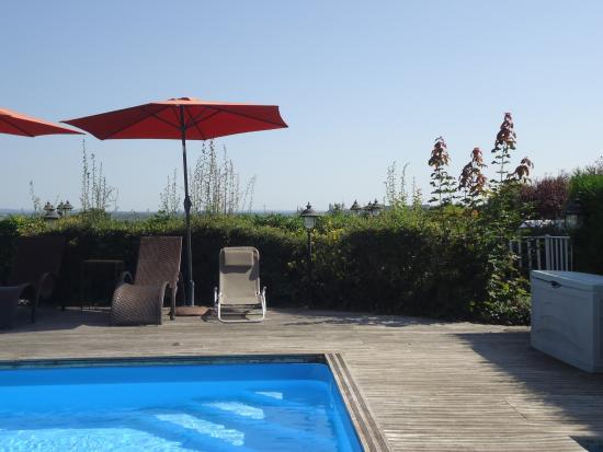 Piscine picture of les terrasses de saumur saint for Piscine de saumur