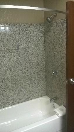 Comfort Inn & Suites Springfield I-44: Comfort Inn Springfield Shower Marble walls