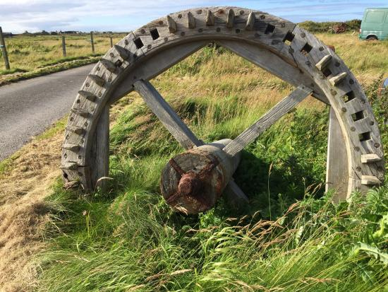 North Ronaldsay Lighthouse: Oat mill cog from an abandoned mill