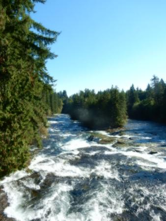 Courtenay, Canada: Another river visited on the cycling tour