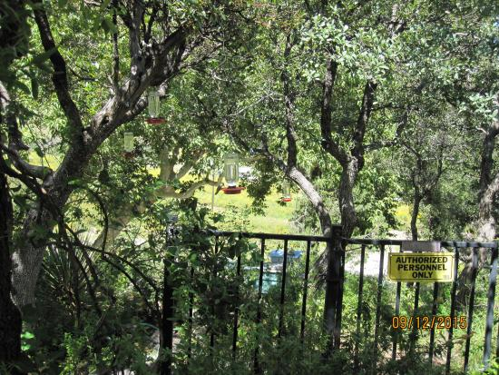 Beatty's Miller Canyon Apiary & Orchard: The stations