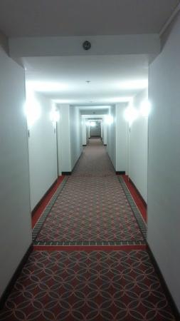 Hyatt Regency Deerfield: Hallway