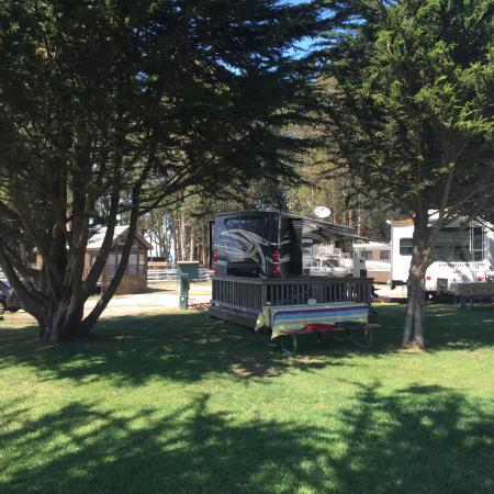 Santa Cruz North-Costanoa KOA Reviews - Campendium
