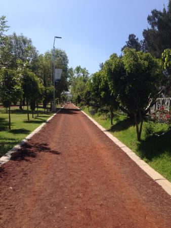 Jardin del arte puebla mexico anmeldelser tripadvisor for Jardin 3 marias puebla