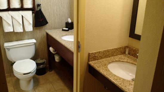 Hampton Inn Scranton at Montage Mountain : Bathroom area with double sink.