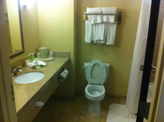 Holiday Inn Express Hotel & Suites: Hotel Room
