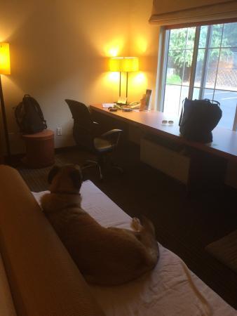 La Quinta Inn & Suites Raleigh Crabtree: photo0.jpg