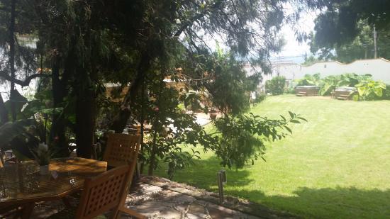 Colibrí Hotel B&B: El bello jardíin