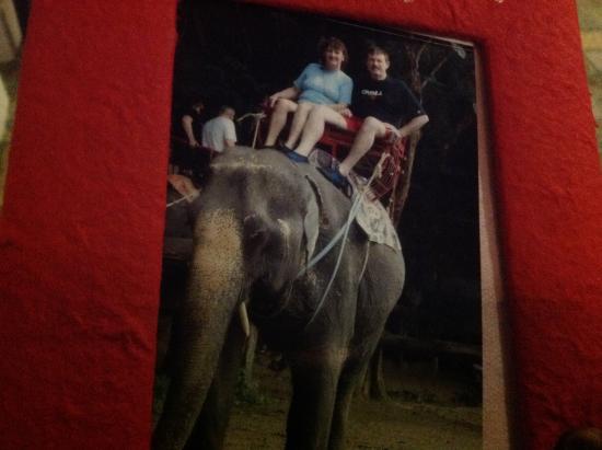 Best Rafting 4U: Elephant ride