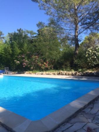 Bergerie del Arte : La piscine