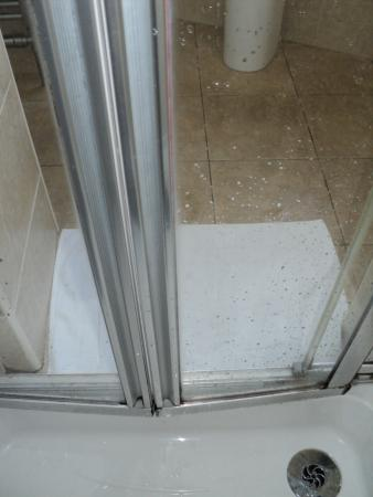 Shower door not closing