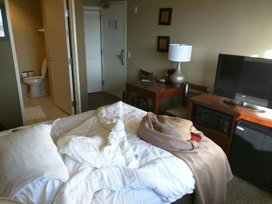 Comfort Inn Fountain Hills - Scottsdale: Hotel