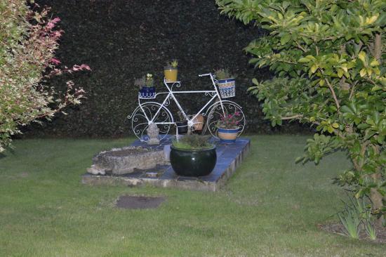 Marion's Bed & Breakfast: garden