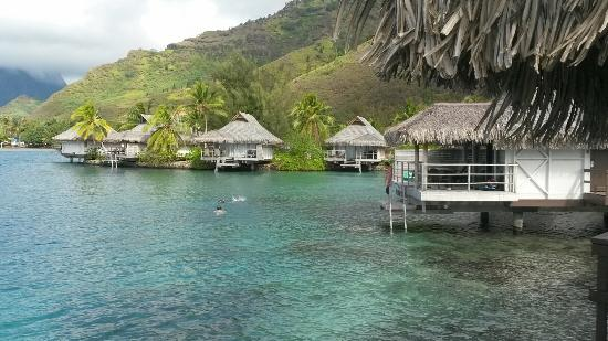 The View From Our Premium Overwater Bungalow Picture Of