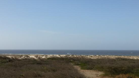 Banana Bus: Scenic view around the lighthouse in Aruba