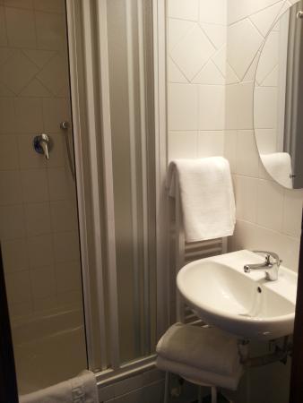 Hotel U Tri Pstrosu (At the Three Ostriches): il bagno della camera