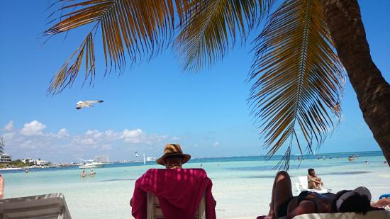 Grand Oasis Palm: playa del hotel