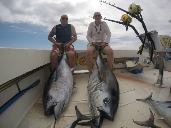 Big eye tuna picture of cavalier fishing charters for Puerto rico fishing
