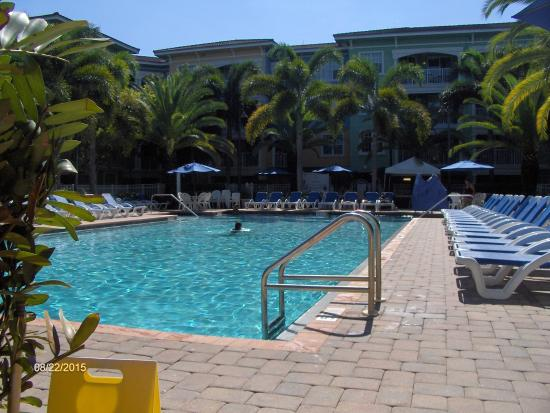 Mizner Place at Weston Town Center: The pool