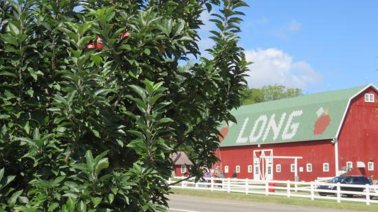 Long Family Orchard, Farm, and Cider Mill