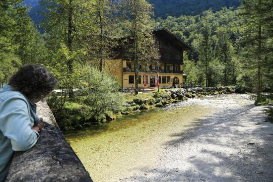 Torrenerhof: Daar boven tussen de bergen Gollingen en omgeving